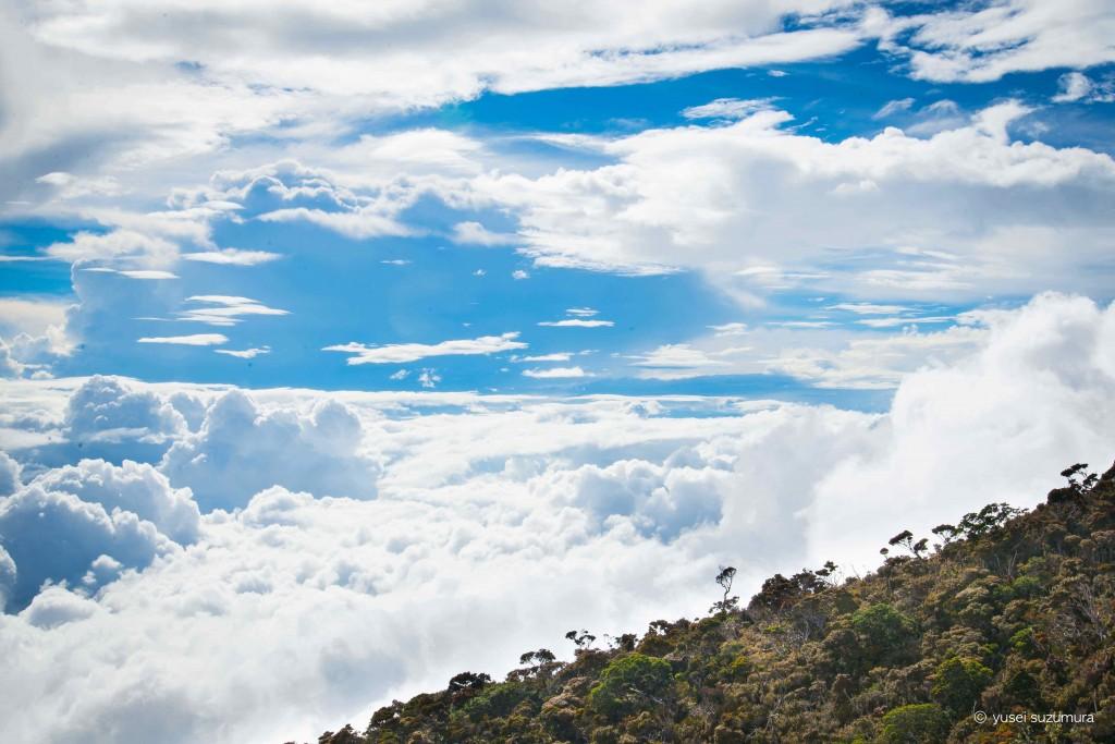キナバル山標識3