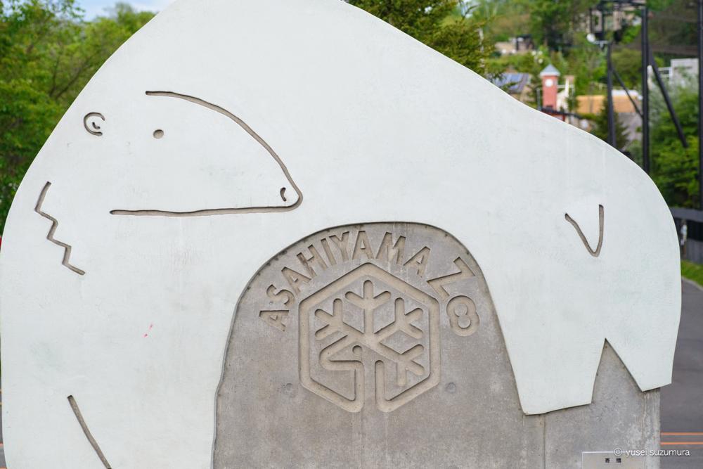 【北海道】日本最北の動物園「旭山動物園」に行ってきた!動物が近い!