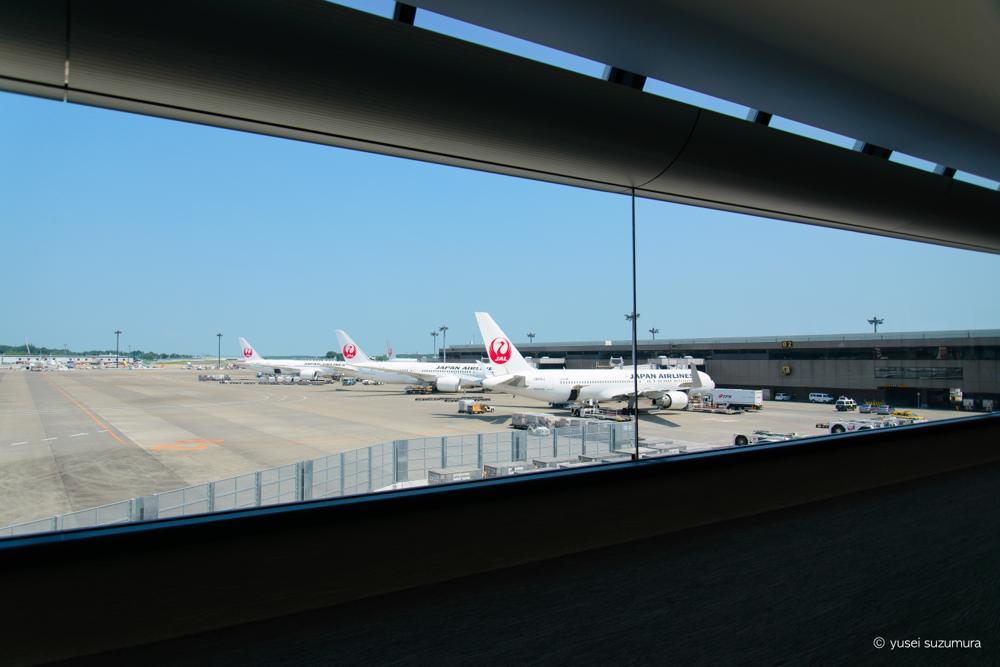 成田空港 JAL