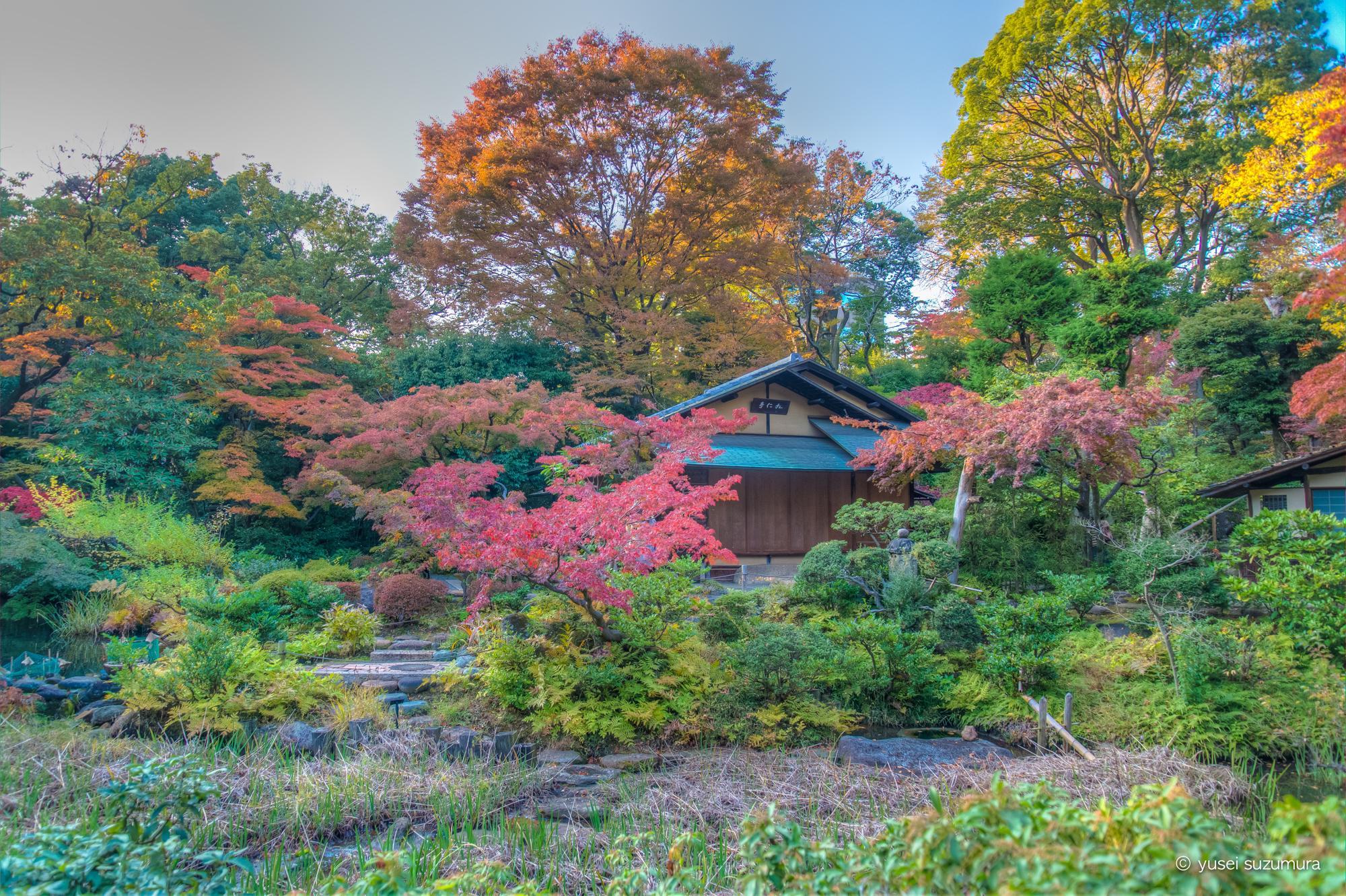 根津美術館の紅葉と庭園