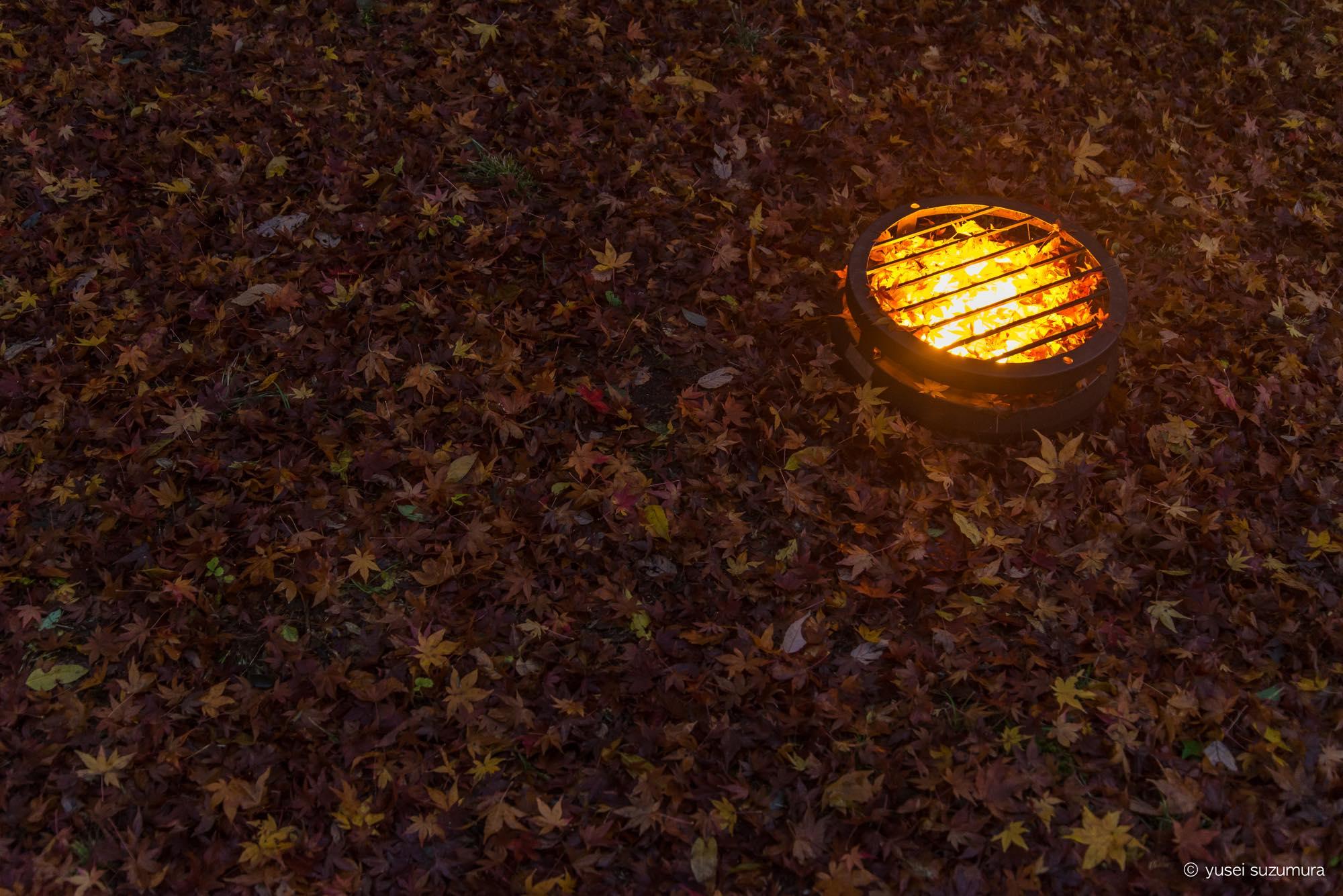 香嵐渓の紅葉ライトアップのスタート