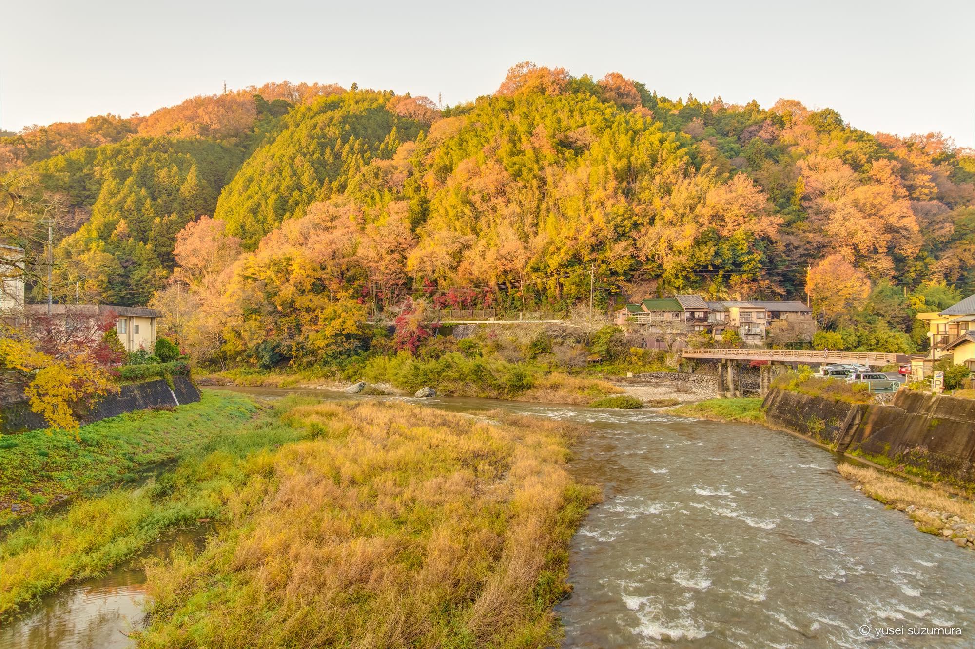 香嵐渓の向かいの山の紅葉