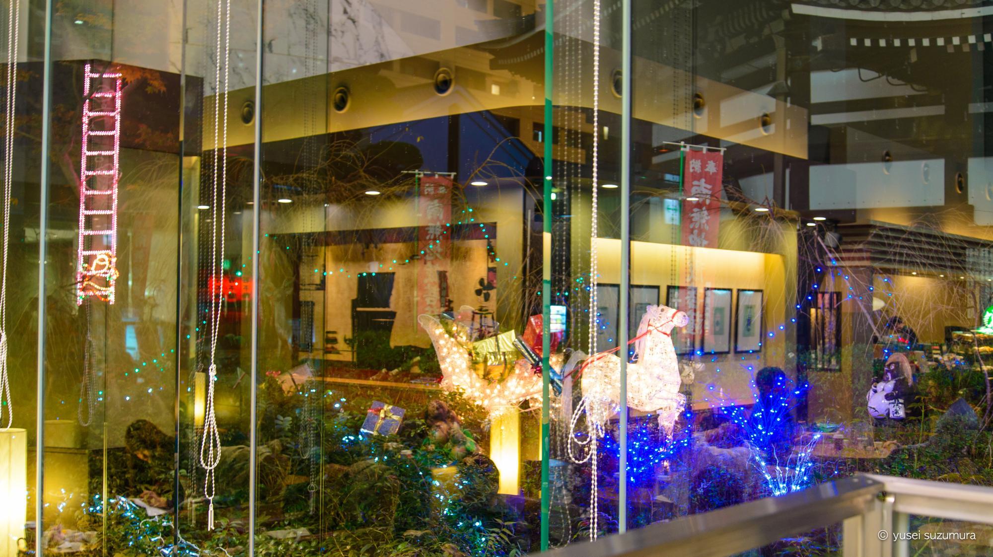 スターバックス六角堂の夜のライトアップ