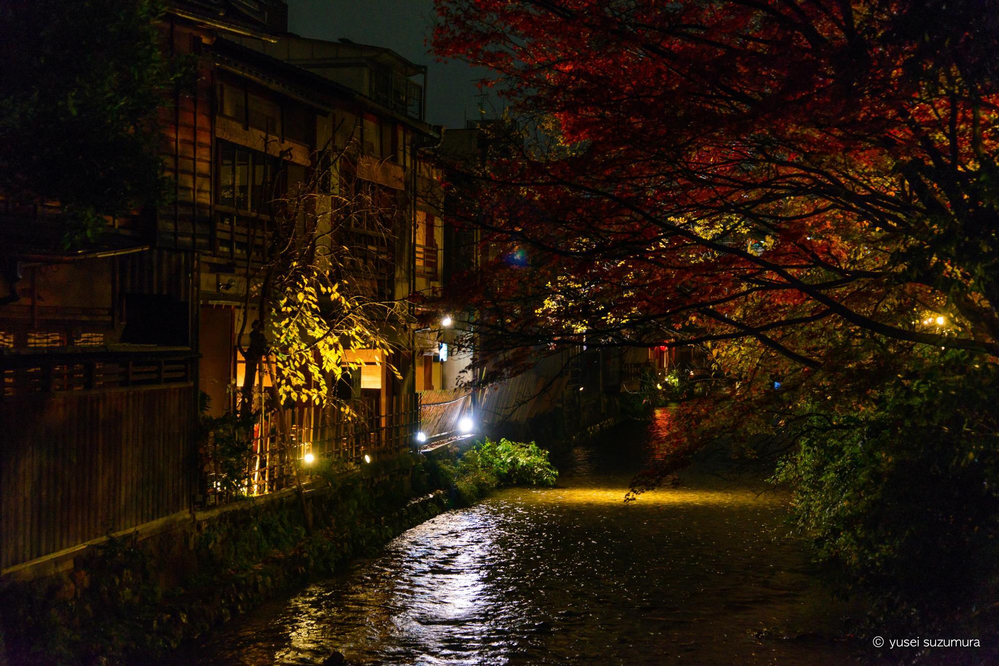 祇園 夜 川
