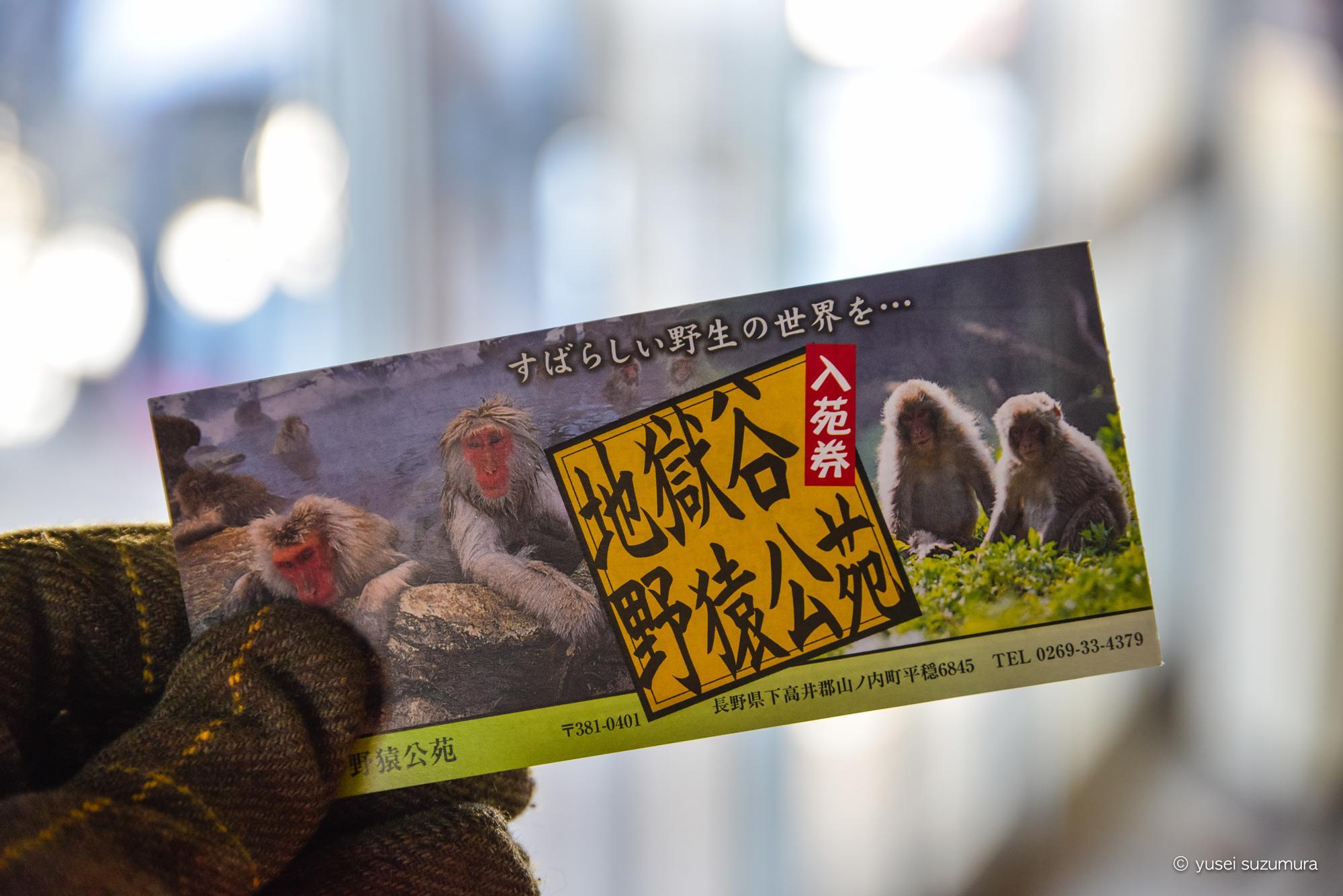 地獄谷野猿公苑 チケット