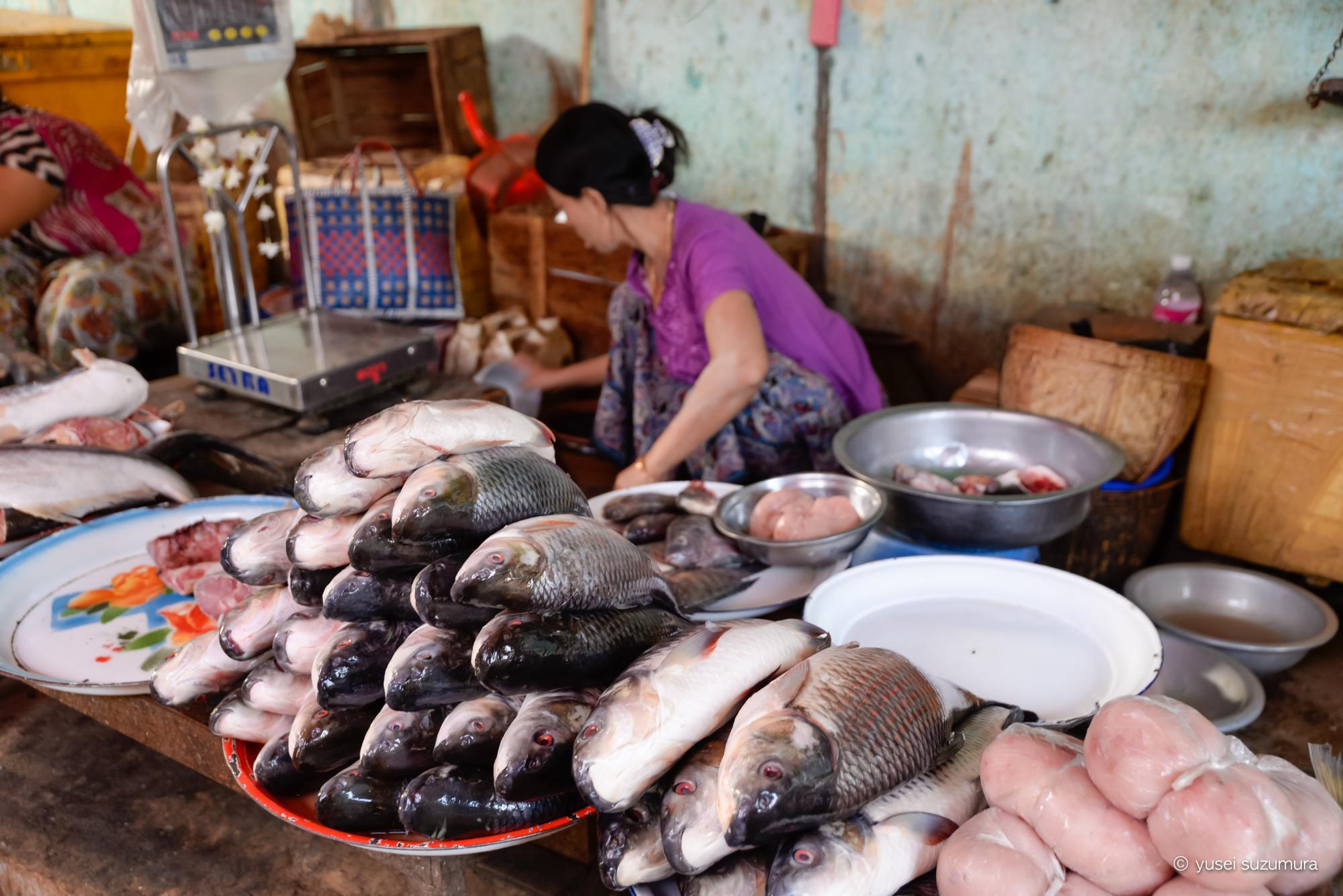 ニャウンウー 市場 お魚