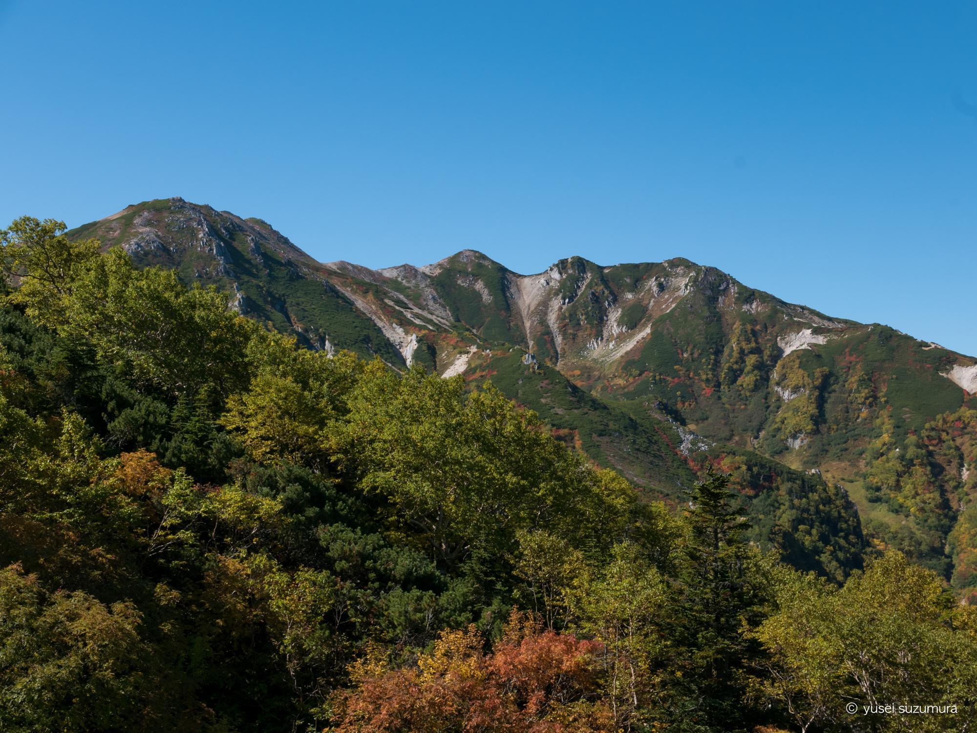 ブナ立尾根 山 風景