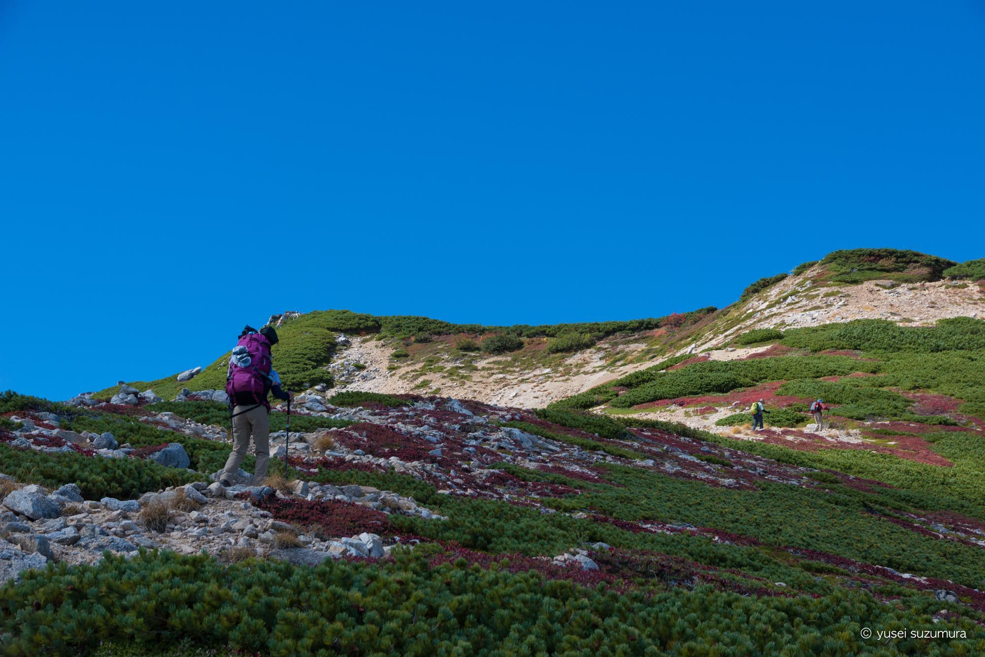 稜線 雲の上 登山