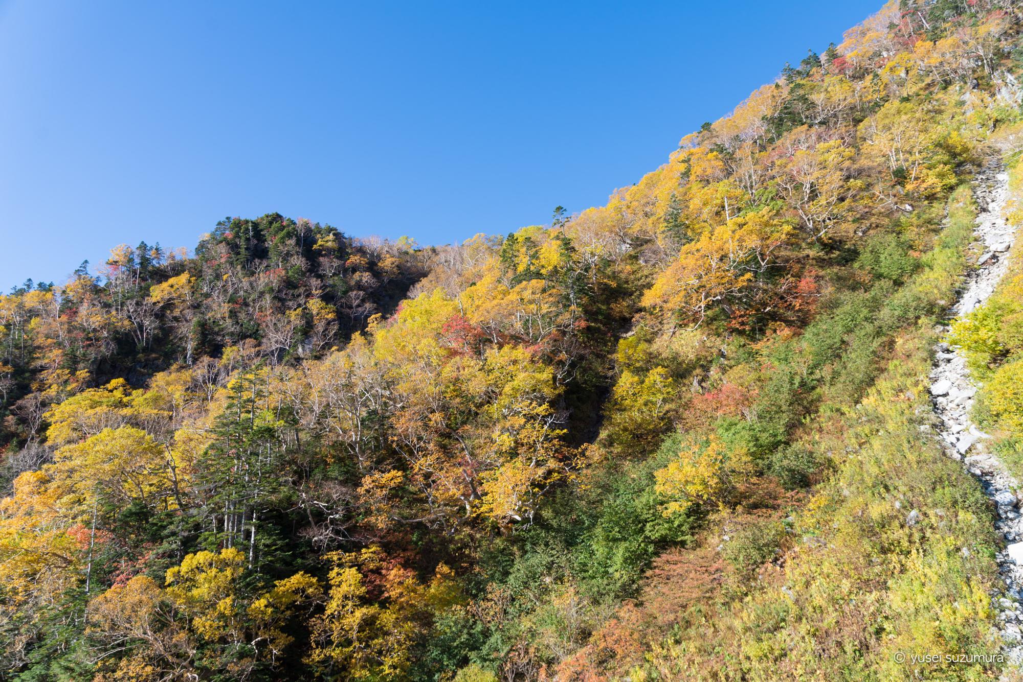駒ヶ岳ロープウェイ 途中