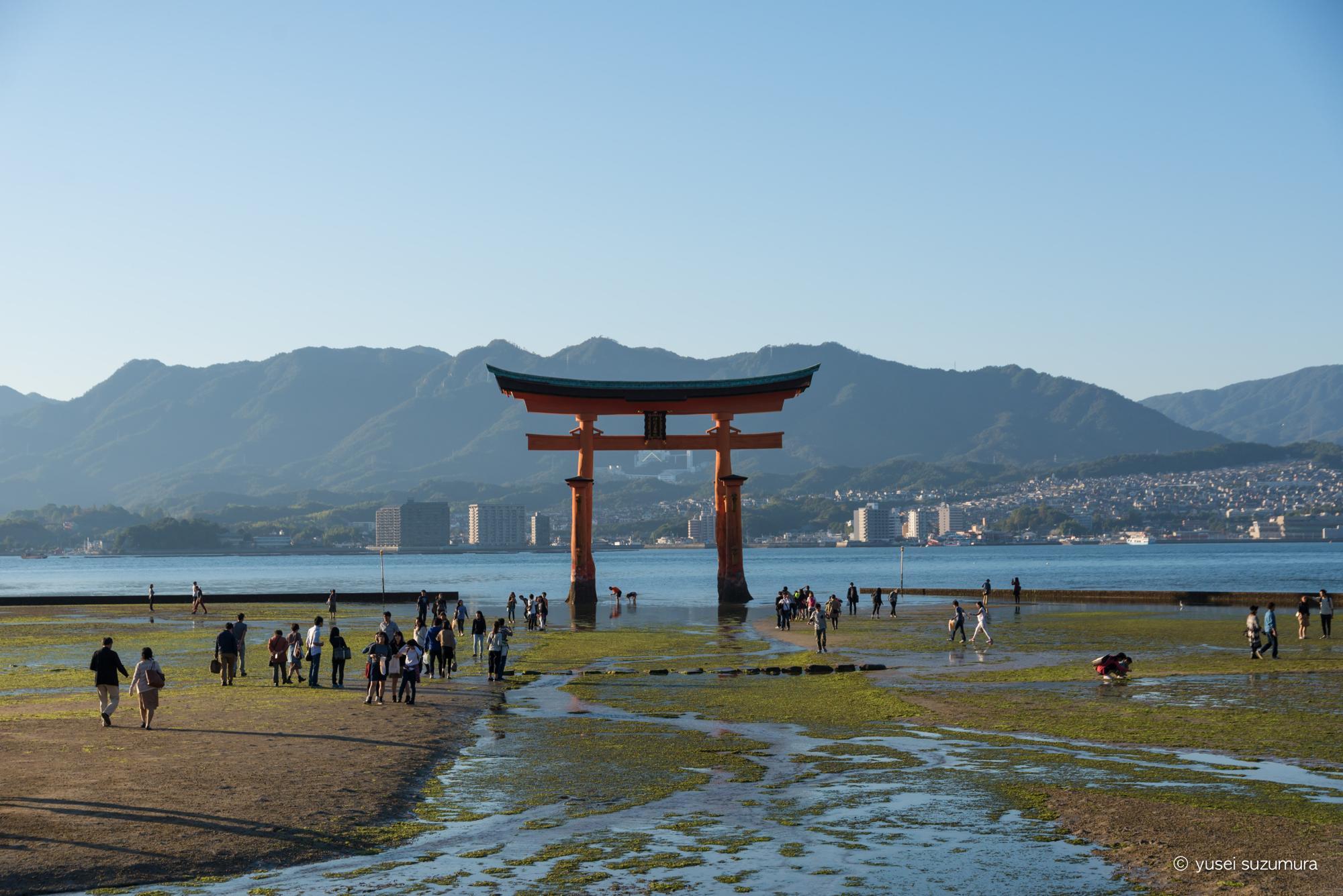 厳島神社 鳥居 干潮