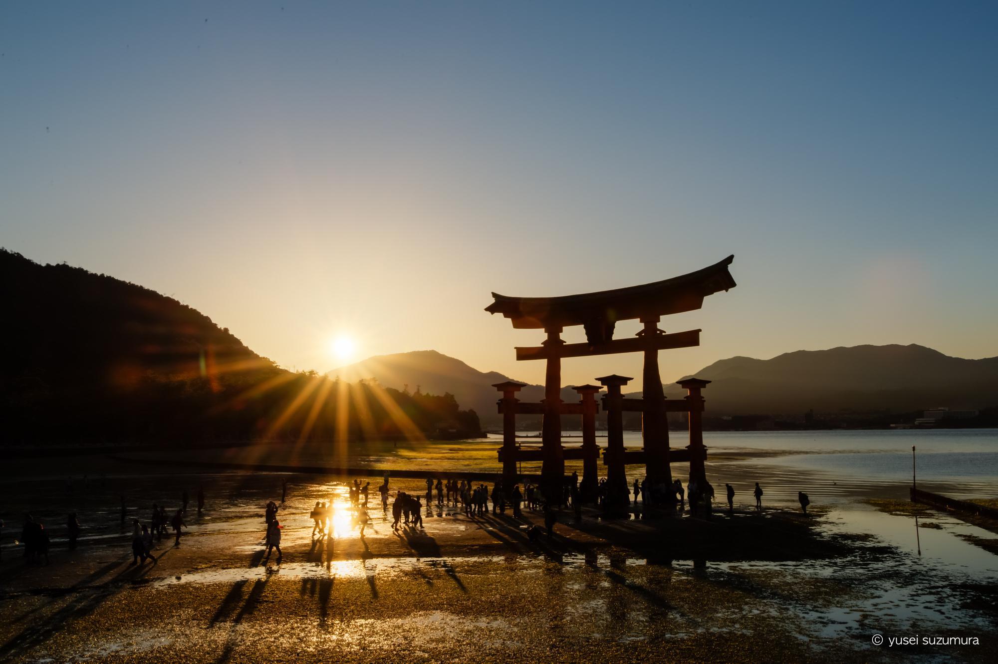 厳島神社 鳥居 夕暮れ