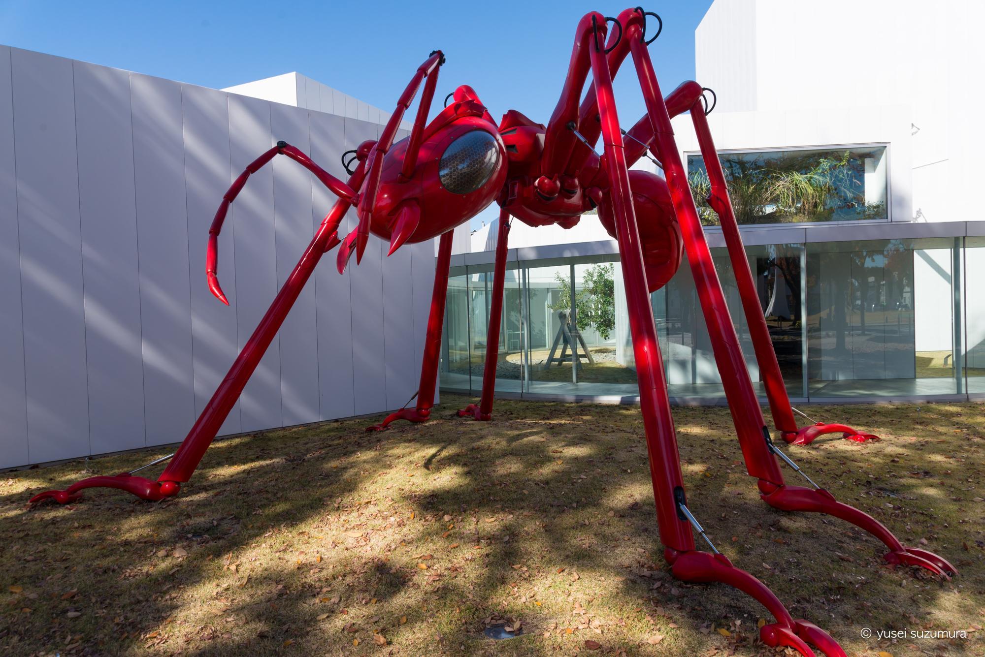 十和田市現代美術館 オブジェ