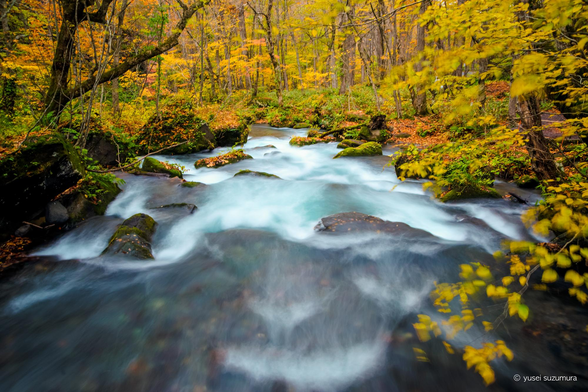 抱返り渓谷と秘湯と奥入瀬海流の紅葉