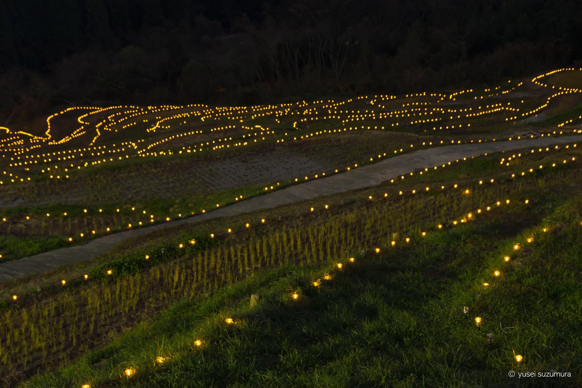 輝く棚田!大山千枚田の棚田のライトアップが幻想的だった。