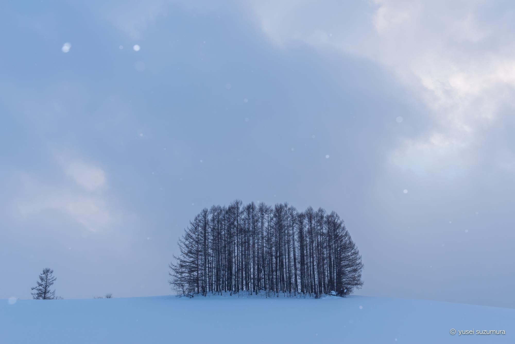 もう一つのマイルドセブンの丘 冬