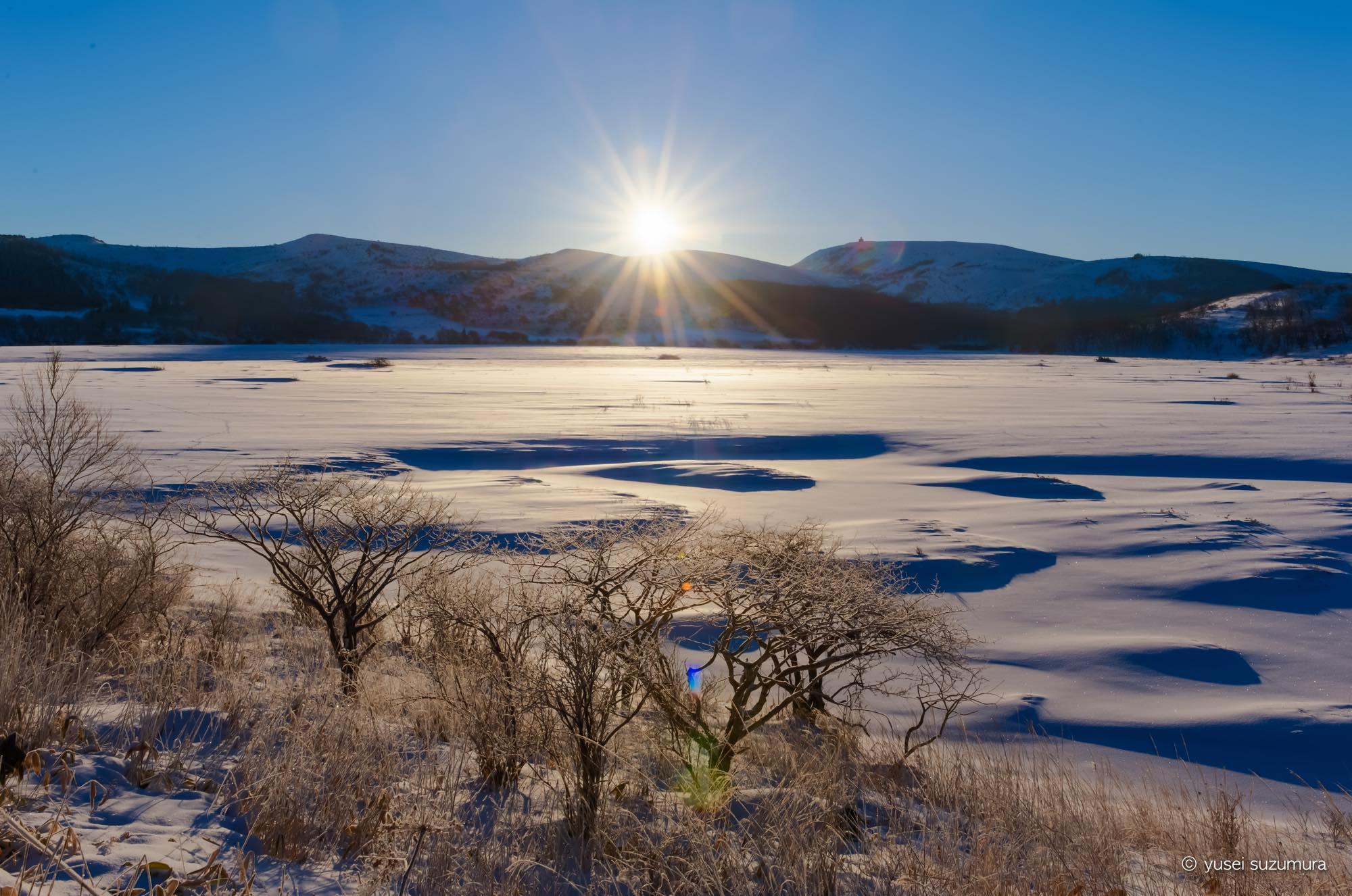 八島ヶ原湿原 霧氷