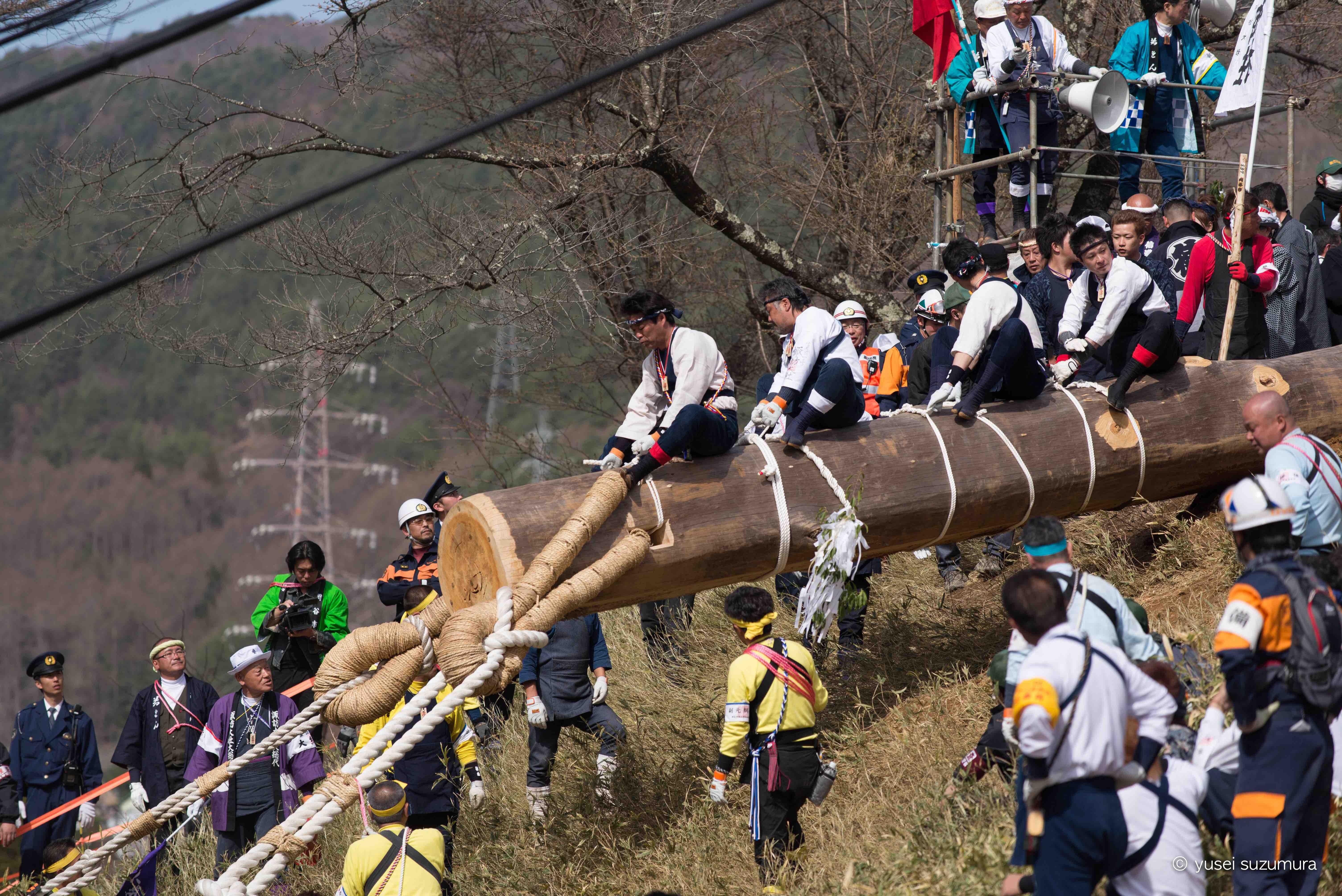 御柱祭 木落し