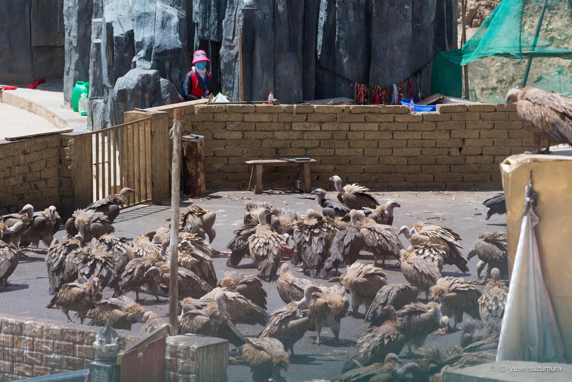 鳥葬 ラルンガルゴンパ