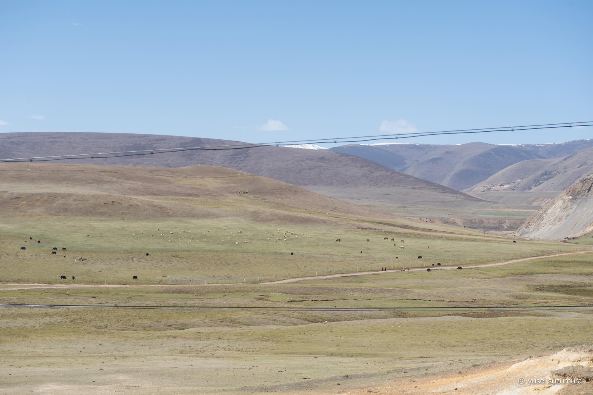 高原 チベット