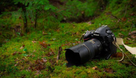 ニコンユーザーの僕が考える2台目のカメラについて