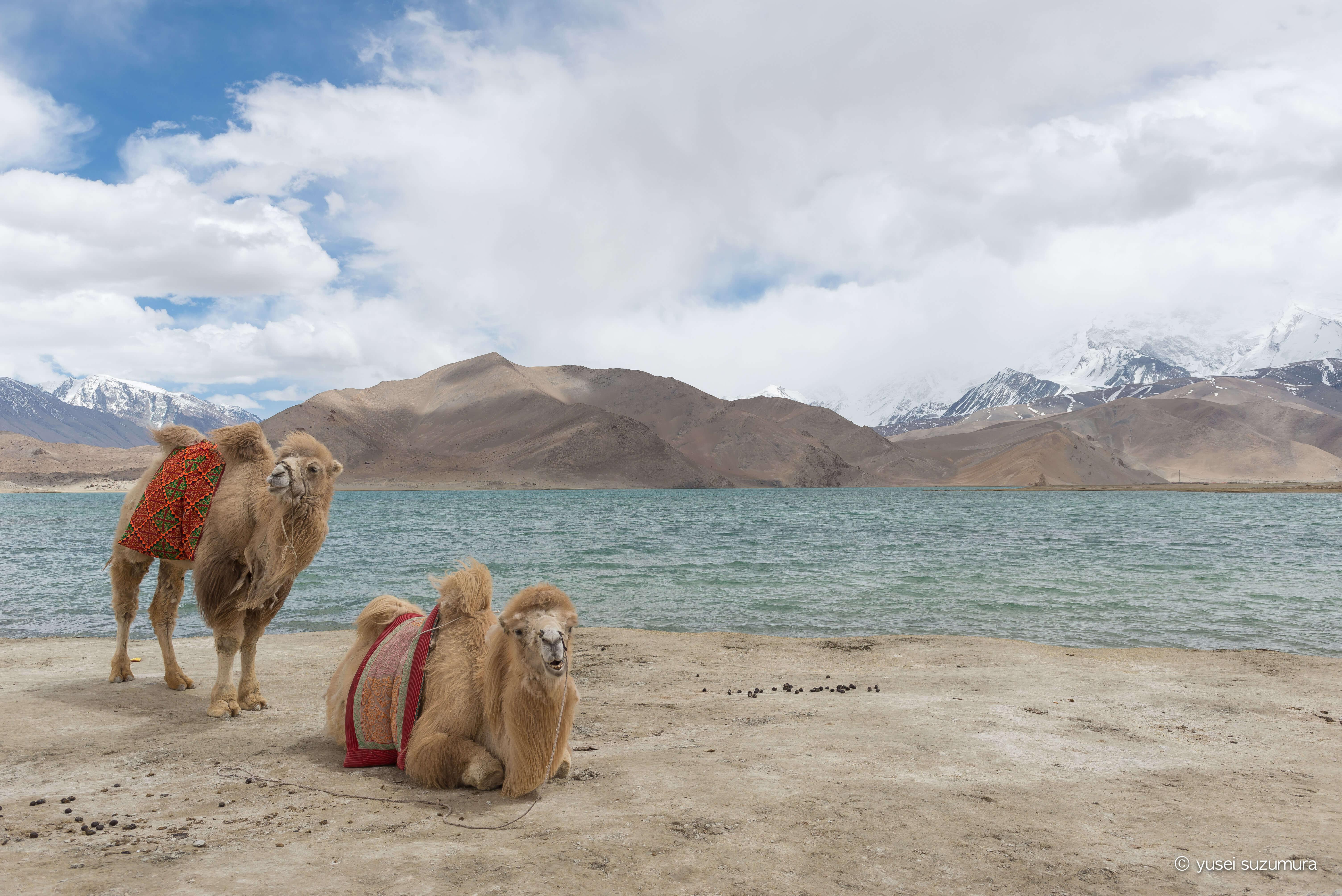 タシュクルガンからカシュガルへ。新疆ウイグル自治区は面白い。