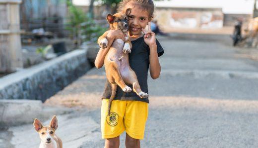【ラマレラ村滞在記】バリからララントゥカまで1日で移動する。