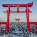 佐賀の海中鳥居!太良町にある大魚神社の海中鳥居で朝と夕方に撮影してきた。